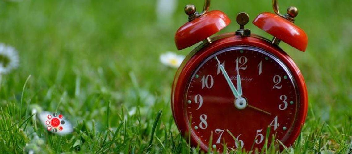 tempo e business